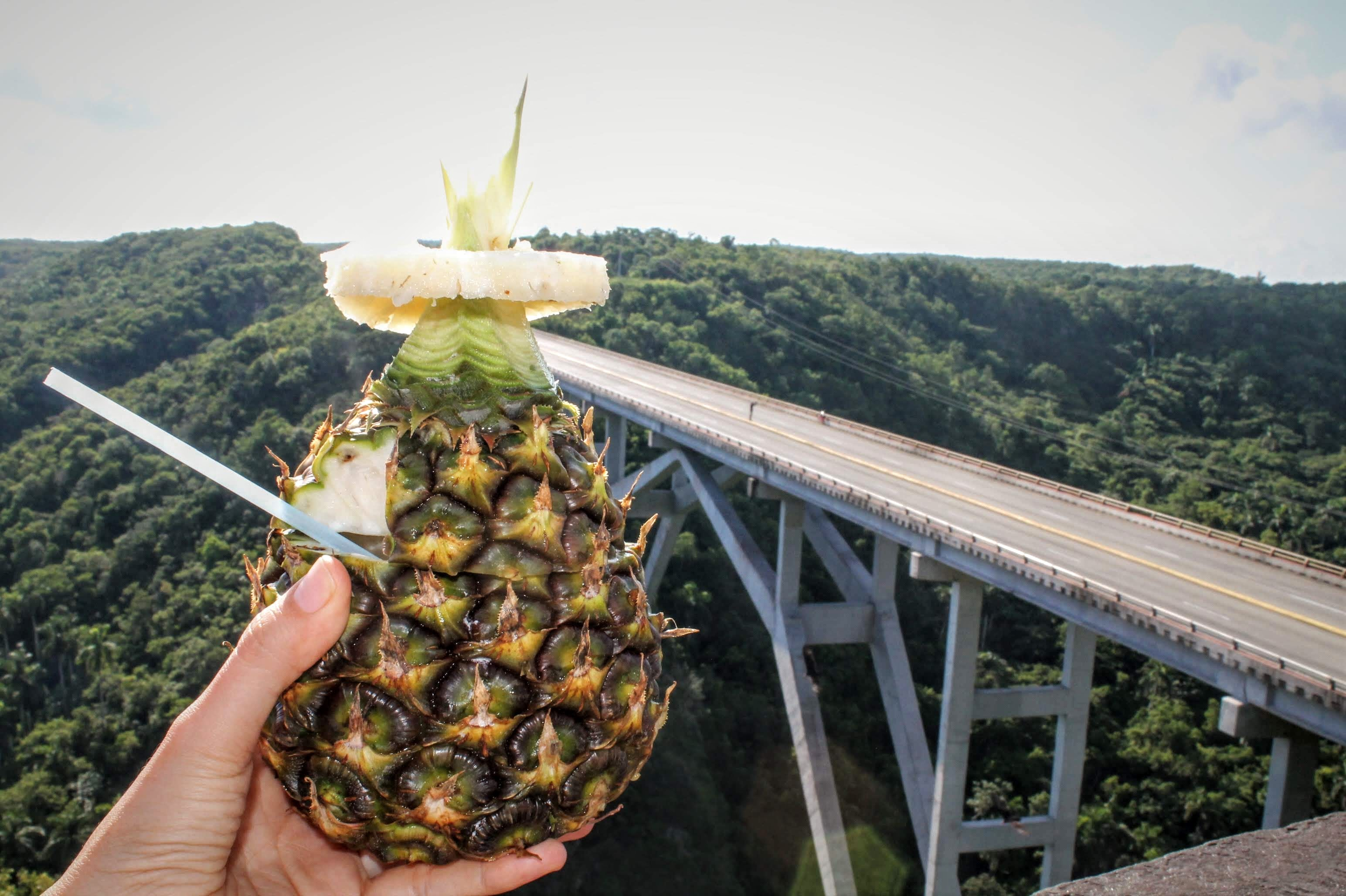 ¡Prueba estas bebidas durante tus vacaciones en Cuba!
