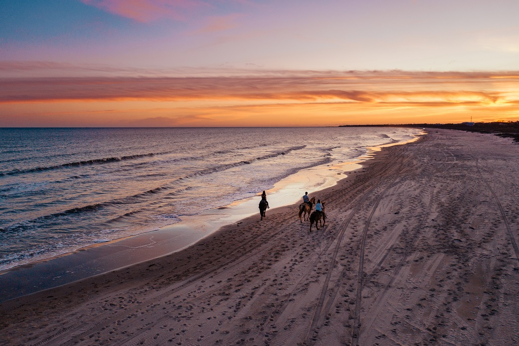 Playas de Florida para todos los gustos