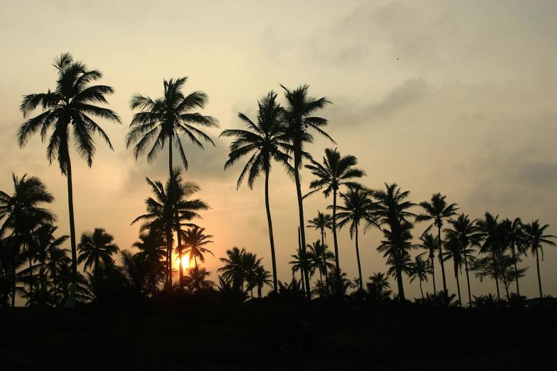 Playas del Golfo de México: las mejores