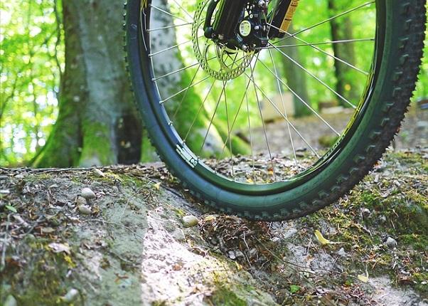 Ciclismo de montaña en el Parque Ejidal San Nicolás Totolapan
